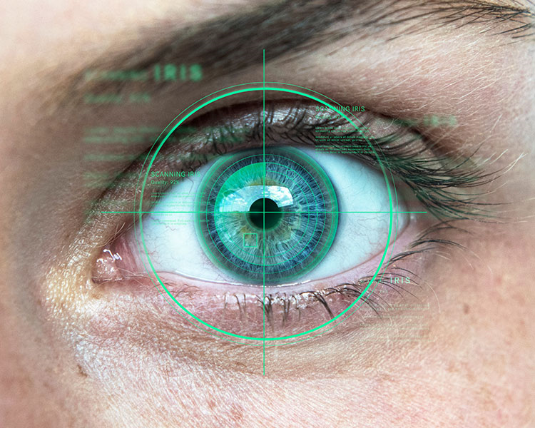 Iris scanning security