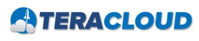 TeraCloud logo